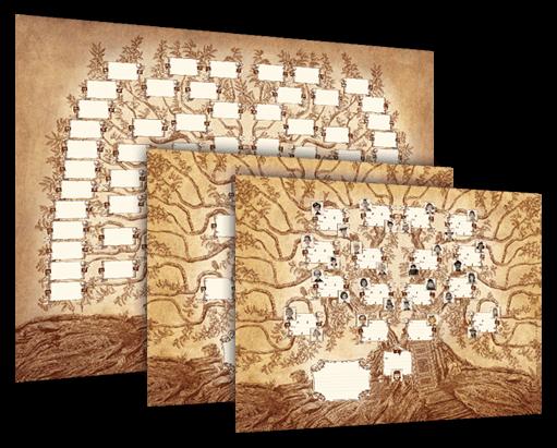 Atramento L Arbre Genealogique Vierge Le Plus Artistique